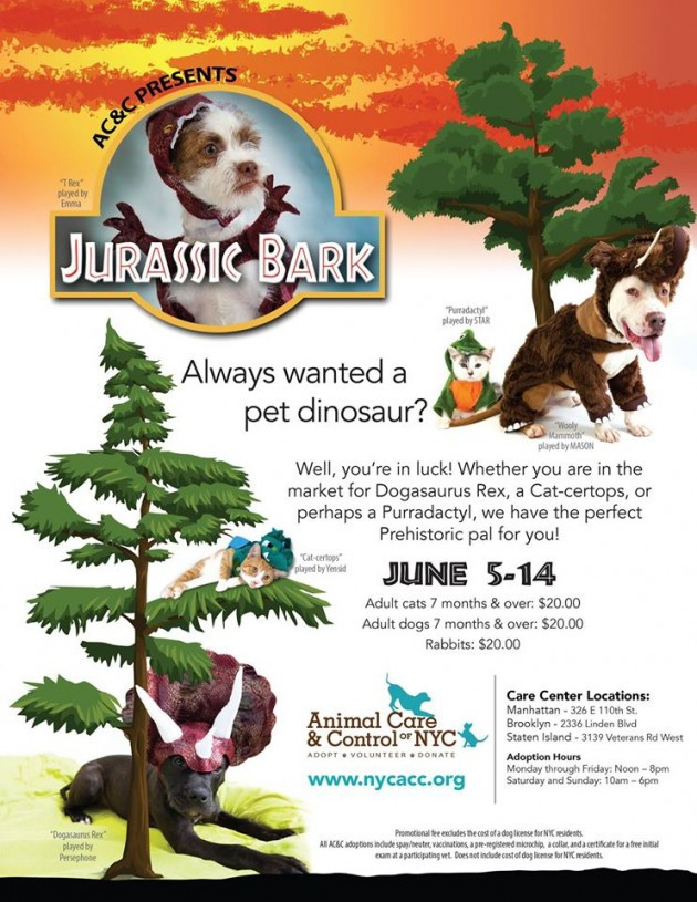 Animal Care and Control NYC Jurrasic Bark