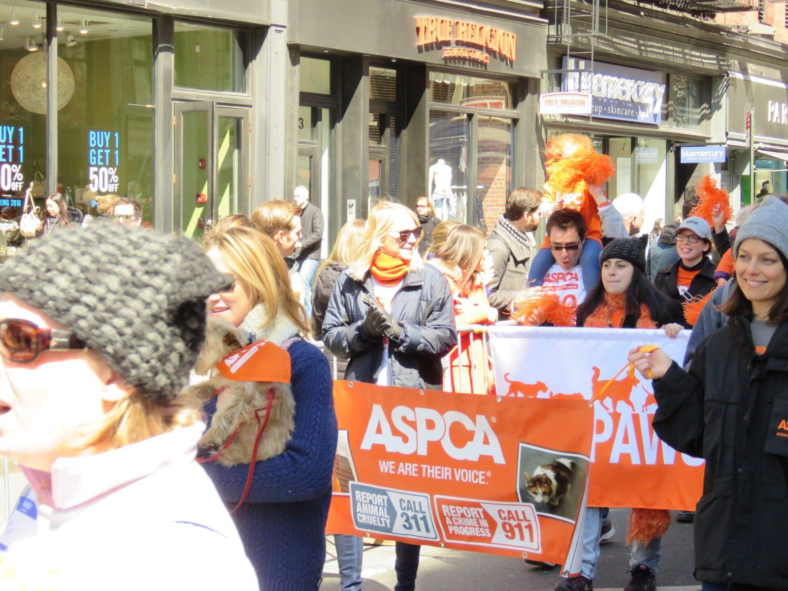 Adoptapalooza Spring 2016 parade 007