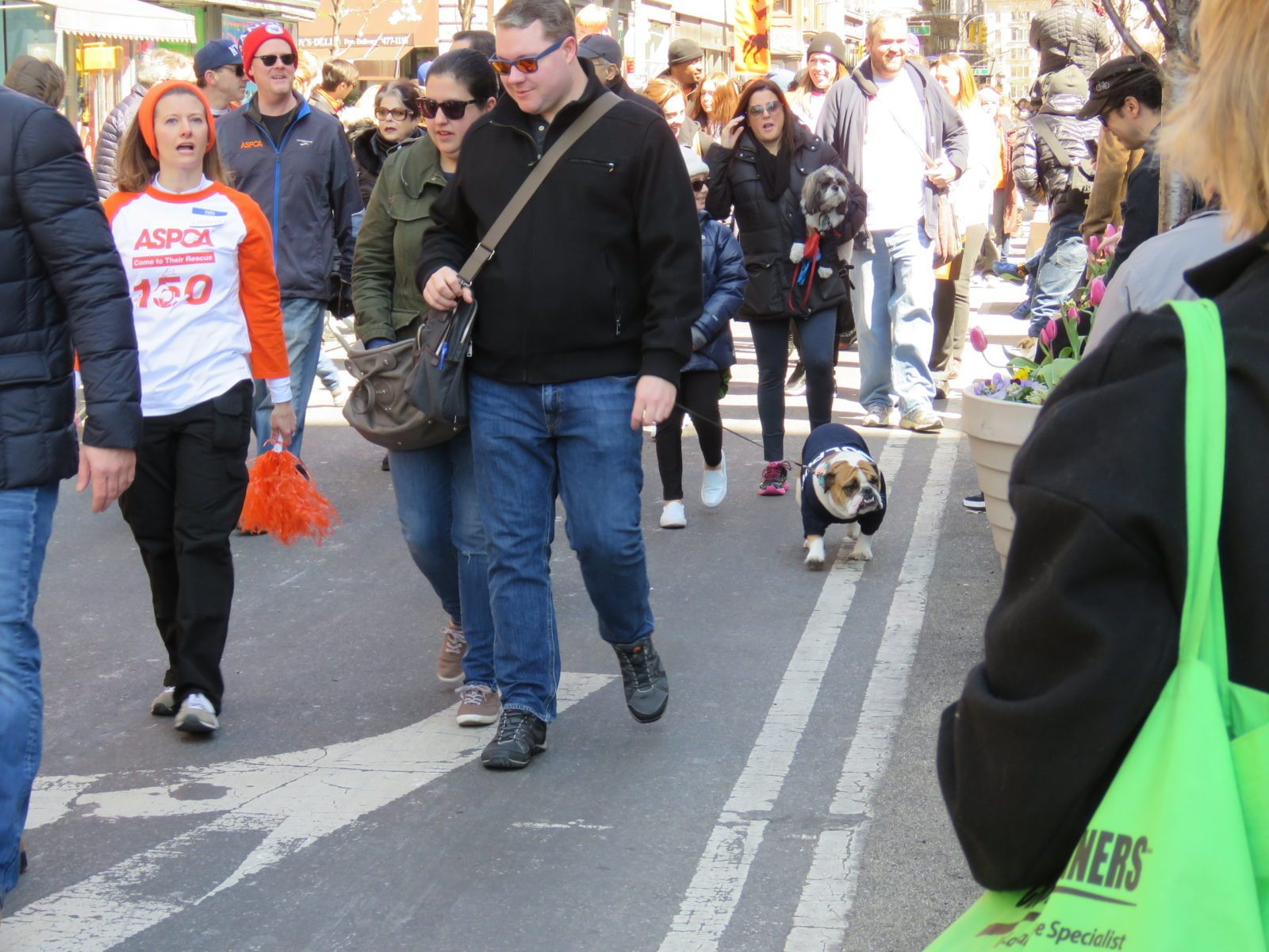 Adoptapalooza Spring 2016 parade 009