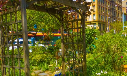 Picture Of The Day: LaGuardia Corner Gardens