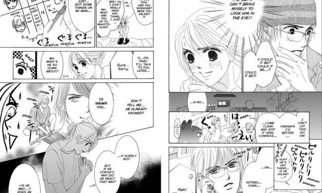 HOTARU'S WAY VOL. 5 Review